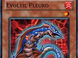 Evoltil Pleuro