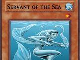 Servant of the Sea