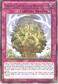 Árbol sagrado naturia