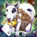 Foto perro encadenado
