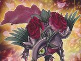 Dragón de la Rosa Roja