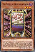 Flor cardian de cerezo con la cortina
