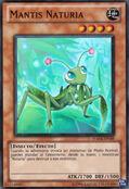Mantis naturia