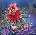 Foto floración brillante