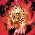 Foto tigre de llamas