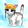 Foto gato rescatador