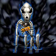 Foto cráneo perro marron