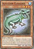 Aligátor cunagrís