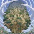 Foto árbol sagrado naturia