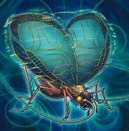 Foto insecto de la resonancia