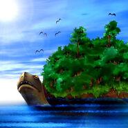 Foto tortuga isla