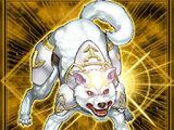 Ryko, Cazador Luminoso