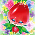 Foto tulipán naturia