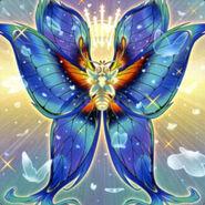Foto mariposa serafín