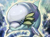 Delfín de Aura Blanca