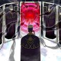 Foto espejo de juramentos