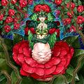 Foto tytannial, princesa de las camelias
