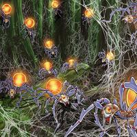 Foto nido de arañas