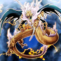 Foto rey dragoon