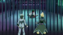 Aster, Kite y Yuya