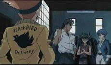 Blackbird chaqueta