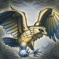 Foto águila cunagrís