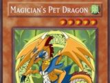 Magician's Pet Dragon