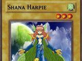 Shana Harpie