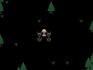 Dark Forest Entrance