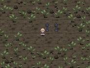 Grass world 2