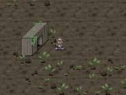 GrassWorldDreamPlanets