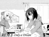 REM 3: Only a Dream