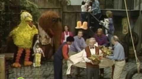 Sesame Street Wedding Day