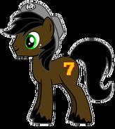 Toby Pony