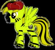 Kevin Pony