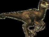Donna (Velociraptor)