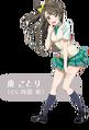 Love Live! infobox - Minami Kotori.png