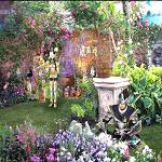 My garden2