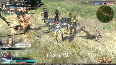 DWO Twin Fans - Musou's
