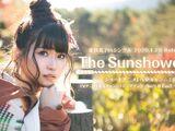 The Sunshower