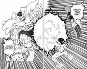 Yusuke vs toguro last attack