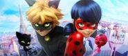 Zag Website Ladybug Cat