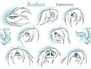 Transylmaniac - Bouhou's Expressions