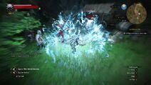 Geralt W3 Aard