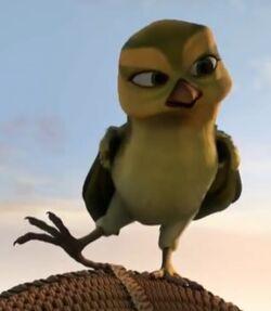 Weaverbird Tini