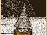 Hexenhutpilze