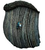 Blaubär in den Barten des Tyrannowalfischs
