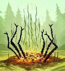 Waldspinnenhexenverbrennung