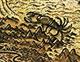 Skorpionhydra