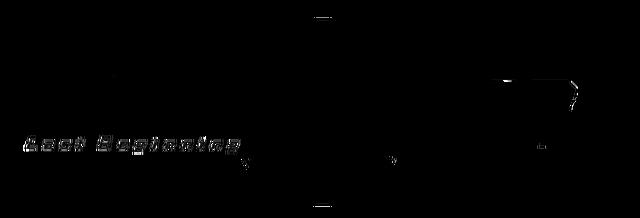 File:Zanki Zero Last Beginning - Official Website - Logo (English).png